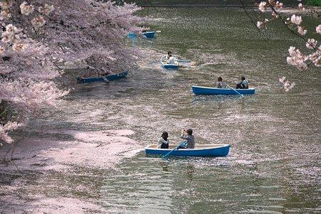 2011.04.11 皇居 北の丸公園 千鳥ヶ淵-3