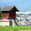 Photos: 伊勢原の街を見下ろす祠:2007_0908_A540_IMG_0359