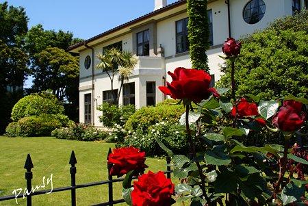 rose garden..9
