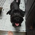 Photos: 龍雅くん♪