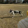 Photos: 走る!!