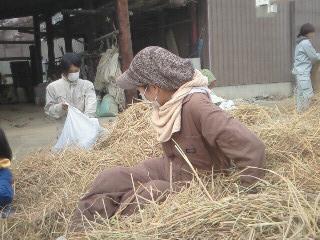 Photos: 脱穀'09 (10)