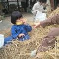 脱穀'09 (9)