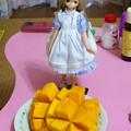 Photos: マンゴーをお召し上がり!