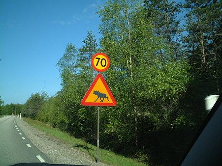 040531 ヘラジカ (Sweden Hallered)