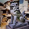 Photos: 八劔神社跡狛犬阿形