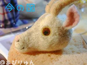 ヤギママ4