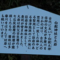 Photos: 101119-46白髭神社と大岩