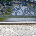 写真: 桜並木に架かる橋