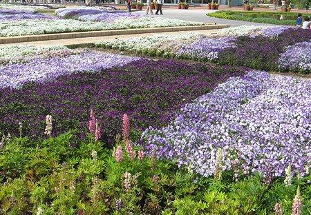 flowerpark konan-210525-7