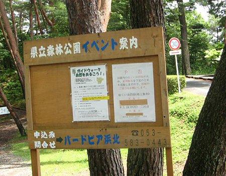 kenritu shinrinkouen-210608-4