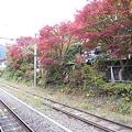 Photos: 御嶽駅ホームから見た紅葉