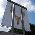 写真: ミホミュージアムののぼり