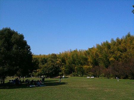 蜻蛉池公園(遠景)