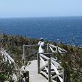 写真: IMG_6806神津島__天上山登山と島巡り