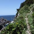 写真: IMG_6854神津島__天上山登山と島巡り