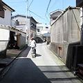 写真: IMG_6899神津島__天上山登山と島巡り