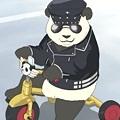 Photos: panda8