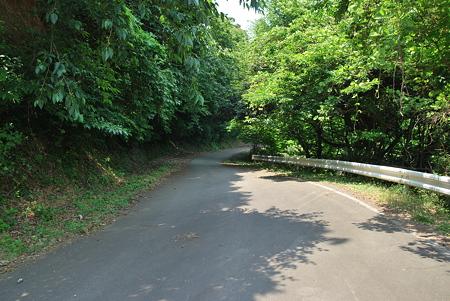 志積トンネル旧道
