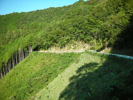 R439杓子峠北2