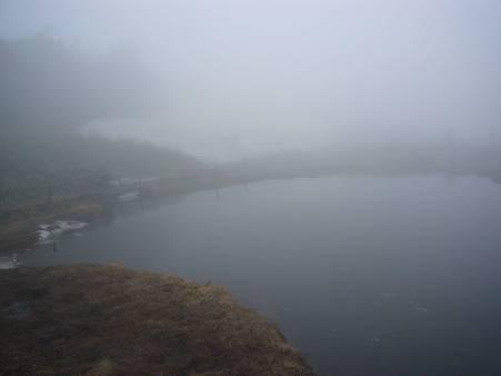 霧の中の駒大池