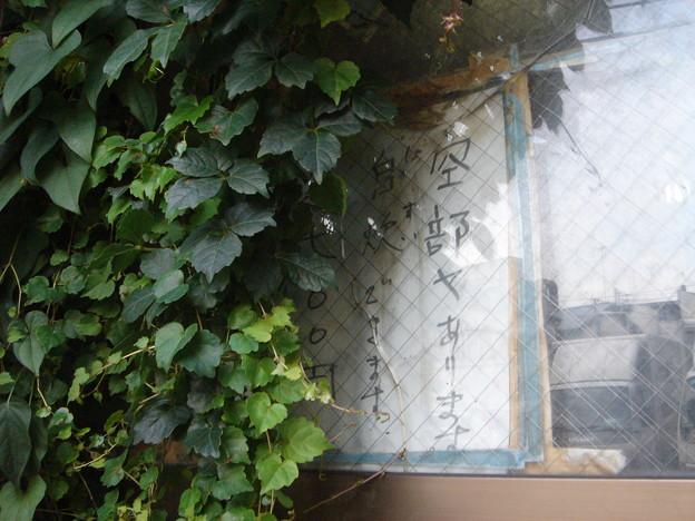 トトロハウス玄関 空部ヤあります 自炊(じすい)できます。 一泊一七〇〇円 DSC01634