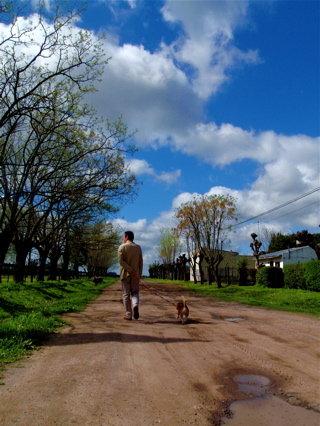 散歩日和3