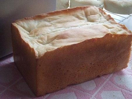 フランスパン風角食1