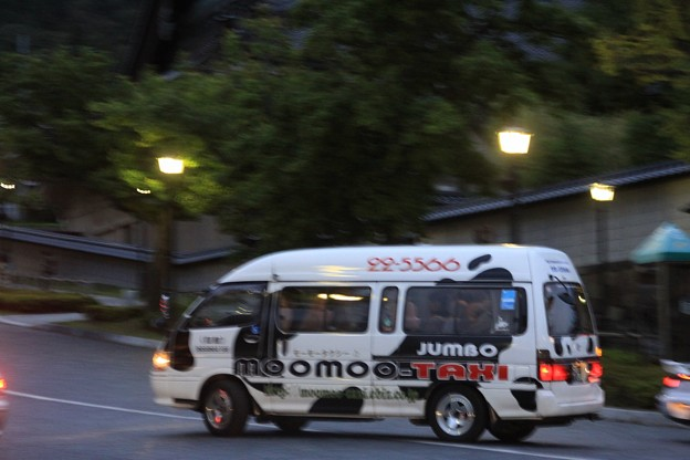 モーモー(ジャンボ)タクシー発見!