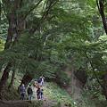 写真: 阿夫利神社から日向薬師へ 01