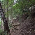 写真: 阿夫利神社から日向薬師へ 11