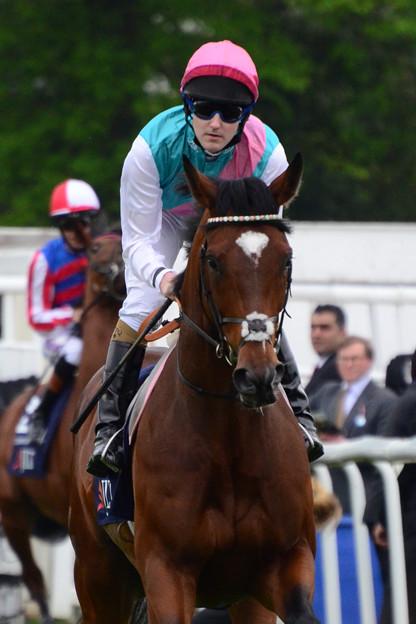 07.Frankel & Tom Queally -Lockinge Stakes-